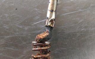 Lý do cần vệ sinh máy ép dầu thực vật thường xuyên