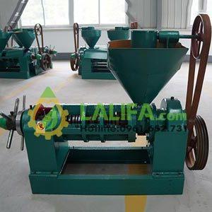 Máy ép dầu GuangXin YZYX95-10 (60kg/1h – điện 8Kw)